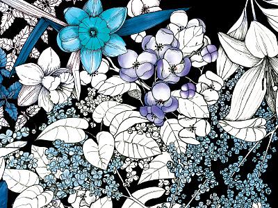 Live Poems Love Poems drawing cover book secret midnight press lilac purple blue illustration pen ink flower