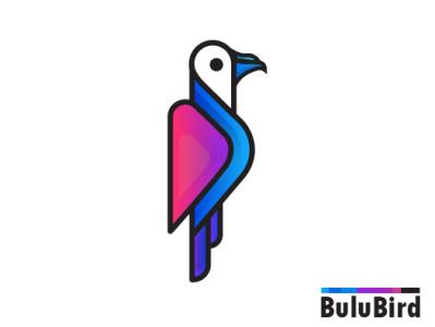 modern bird logo eagle logo animal logo design idea cute animal logos logodesign logo design logo blue bird minimal morden modern bird logo