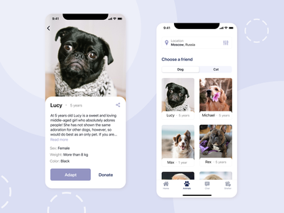 Mobile App - Pet Shelter mobile app shelter animal pet photoshop figma