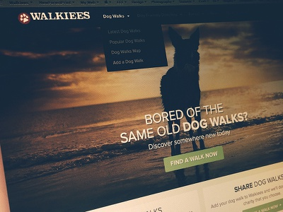 Walkiees homepage tweaks homepage walkiees dog