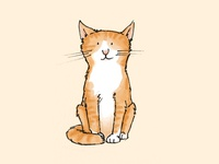 Cat cat illustration drawing cats kitten