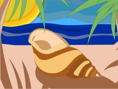 shell design illustration shell