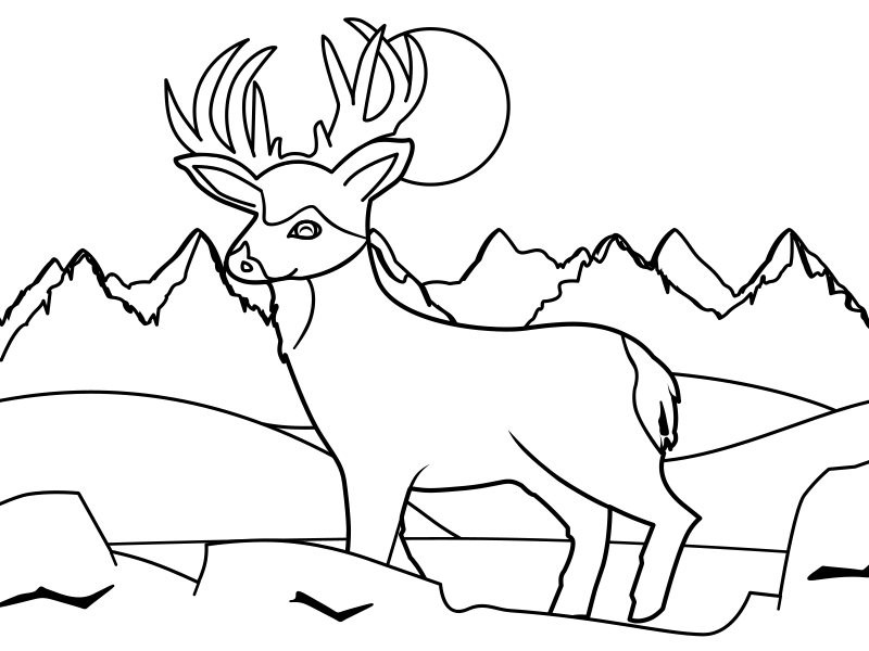 Deer Adventure Dribbble vector cartoon deer coloring book