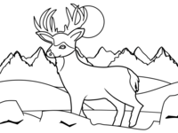 Deer Adventure Dribbble
