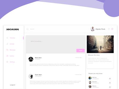 Socialbug Web App Ui Design