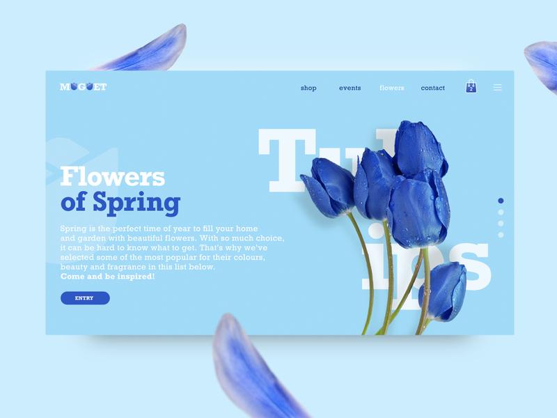 Muguet Florista UI concept
