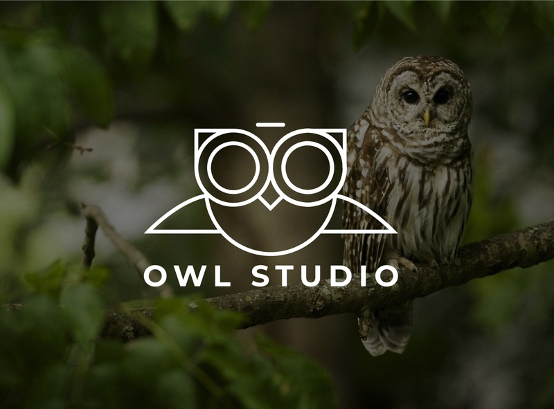 Owl Studio minimal vector logo illustration icon design