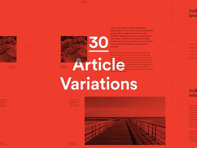 Styleguide - Article variations photography links modules module type setting typography styleguide