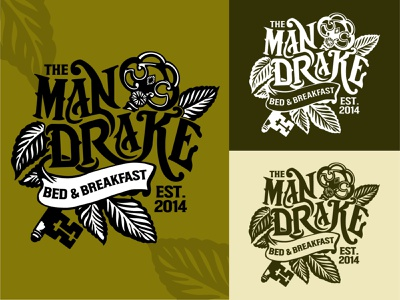 The Mandrake Bed & Breakfast ornamental ornate artisan calligraphy nature logo leaf logo bradning brand identity negativespace logotype mandrake wordmark logo wordmark key logo handrawn bed and breakfast typogaphy handletter handlettering logo