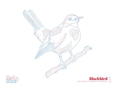 Blackbird line meaning symbolism creative for the birds blue red design illustration