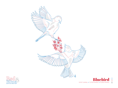 Bluebird line meaning symbolism blue red creative design bird illustration