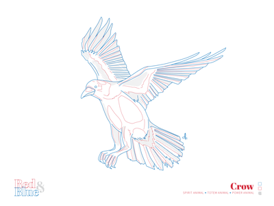 Crow line meaning symbolism blue red creative design bird illustration