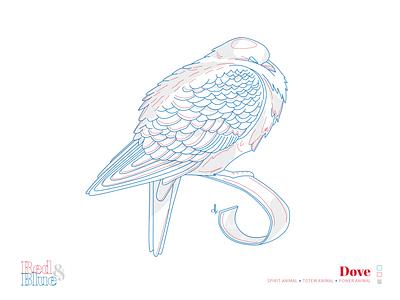 Dove line meaning symbolism blue red creative illustration design bird illustration
