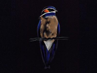 Blue Bird paper bird illustration
