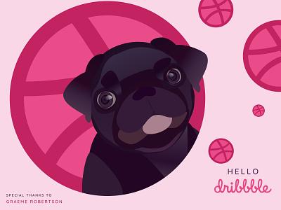 Hello, Dribbble! dog animal pug web vector illustration art