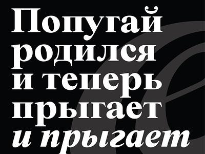 BD Megalona Serif Font Family app ux ui typography art design font typography lettering art branding typogaphy