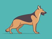 Year Of The Dog: German Shepherd
