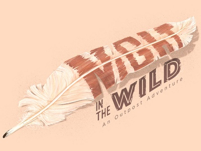 Night in the wild   Feather camping night bird animals nature outpost feather wild