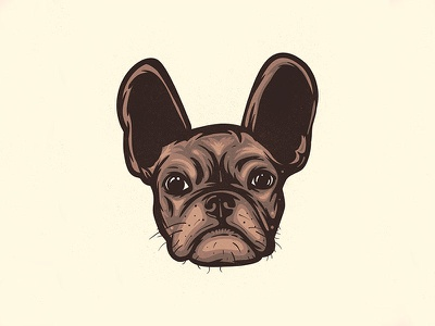 Lil T pets animals friends pups dogs french bull dog bull dog frenchie