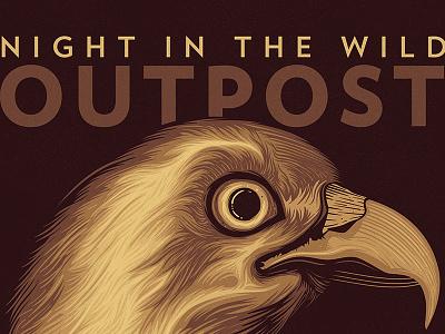 Night in the wild   Osprey osprey camping night bird animals nature outpost feather wild
