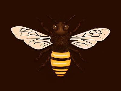 Believe hair illustration pollen bugs honey logo icon golden bee
