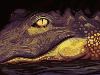 Lurking swamp reptile alligator gator nature vector illustration illustrator