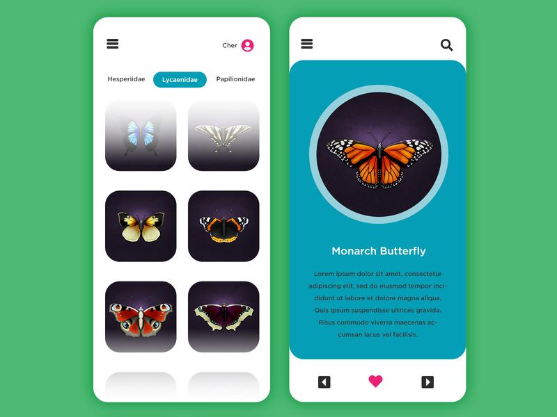 Hi-fi Butterflies bugs catalog hi-fi digital illustration illustration monarch butterfly butterfly butterflies app design