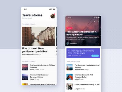 Articles Details UI Mobile Template