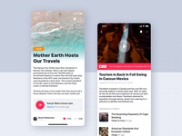 Articles Details UI Mobile Template
