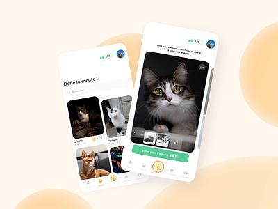 Scorpet UI contest pets mobile ui dribbble design
