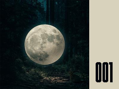 Everday - 001 moon surreal rabbit album cover photo manipulation everyday