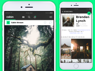 Cabin App Freebie + Tutorial Series sharing timeline feeds template freebie react photo sharing share mobile app ui