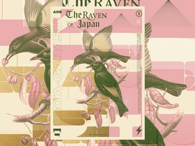 Raven vector japan raven bird poster number tipography graphic gradient flower color
