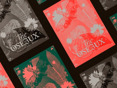 The Oiseaux — Poster Collection 2019 layout aesthetic editorial collection typography nature color graphic design poster