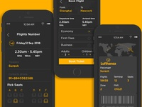 UI Kit For Flight Booking