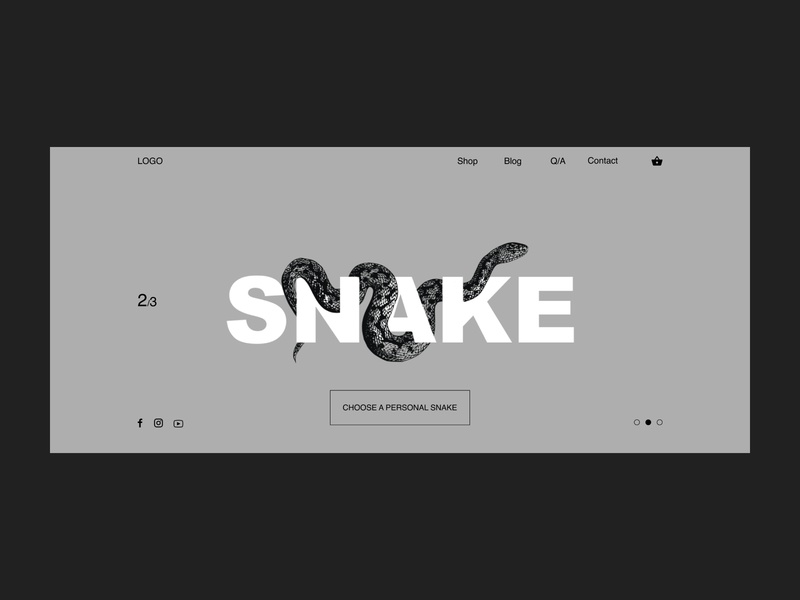 Snake page concept black and white concept snake ui ux typography type minimal design