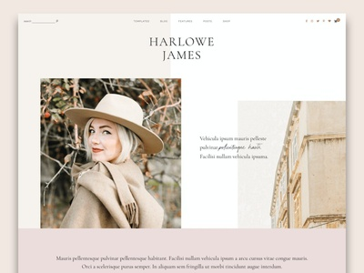 Harlowe: Blog & Shop WordPress Theme wordpress webdesign theme landing page website app web ui branding design