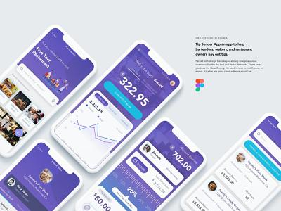Tip Sender App UI Kit app ui ux web design theme landing page website web branding design