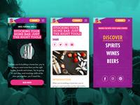 Swizl Web Mobile