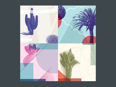 Plant Scribbles 100dayproject weird form color layout