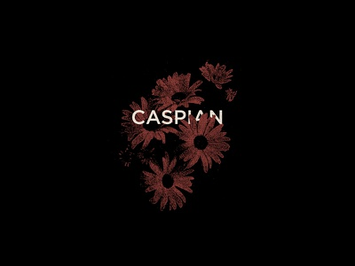 Caspian Shirt Design illustration flowers design shirt merchandise postrock caspian