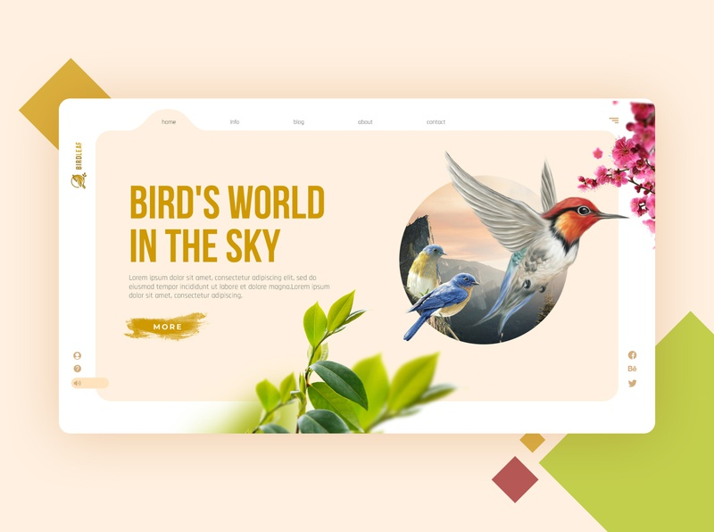 Bird Park | Website Landing page Ui / UX
