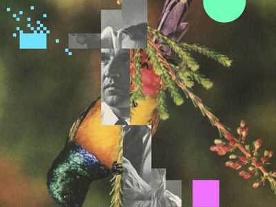 Appeal to nature collage art design