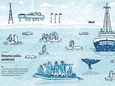 PISMO MAGAZINE vectoart penguin magazine press editorialillustration illustration icon vector boat snow winter arctic