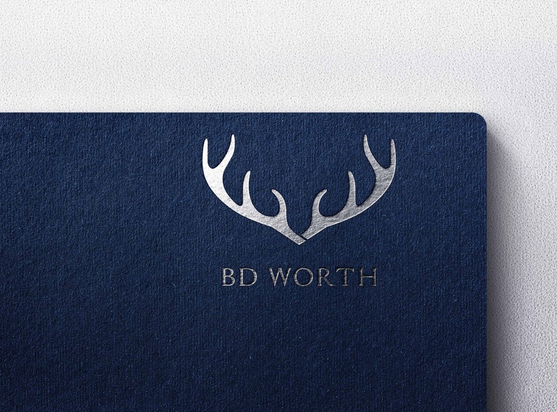 BD WORTH vector typography type logo illustrator illustration icon flat design branding