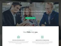 Pellio Homepage Rebound