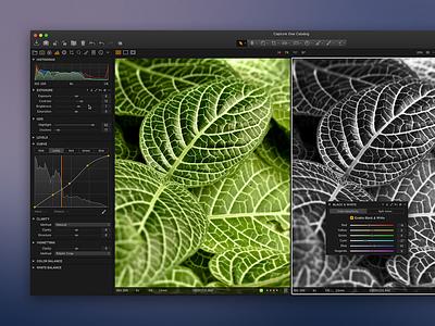 Capture One redesign lightroom camera raw flat ui dark icons photo app mac