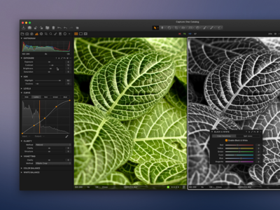 Capture One redesign