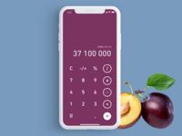 OANDER Weekly Ui - 11 Calculator App