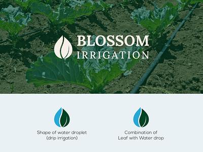 Logo Design for Blossom Irrigation logo designer need a logo nature agriculture logo farm logo irrigation logo agriculture irrigation logo concept a logo logodesigner logodesign dailylogo logo